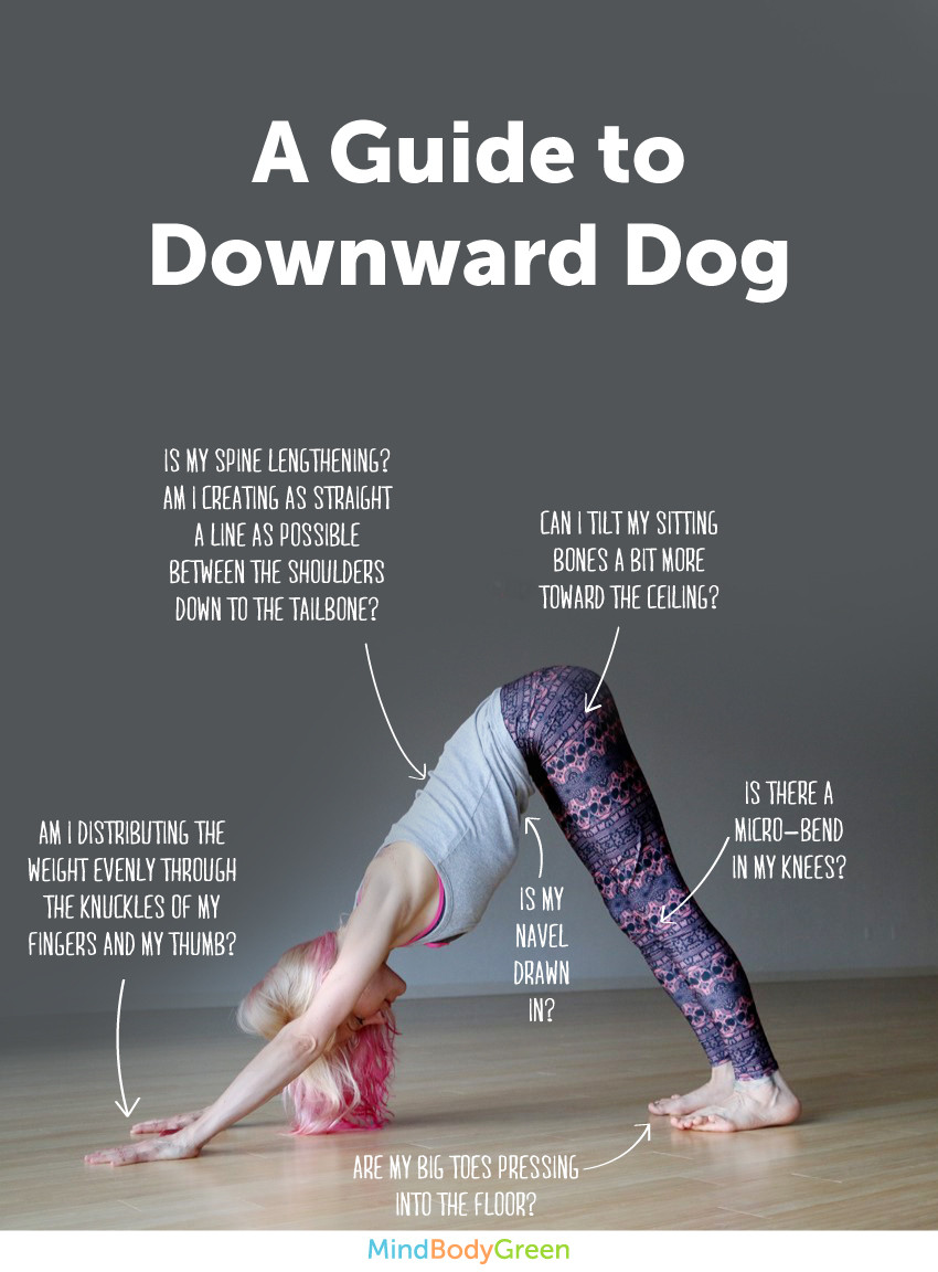 Động tác yoga downward dog the gioi 360 vn